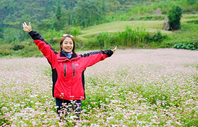 """""""Phát cuồng"""" vẻ đẹp hoa tam giác mạch bung nở trên sườn núi đá Hà Giang - hình ảnh 8"""