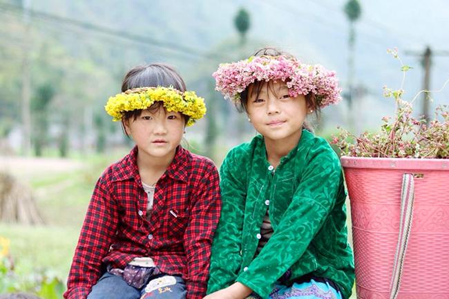 """""""Phát cuồng"""" vẻ đẹp hoa tam giác mạch bung nở trên sườn núi đá Hà Giang - hình ảnh 10"""