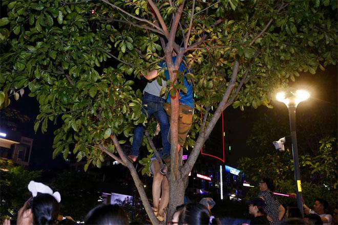 Hàng trăm fan leo trèo, chen chúc tại phố đi bộ xem Mỹ Tâm biểu diễn - hình ảnh 4
