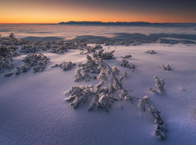 Lạc vào mùa đông kỳ diệu trên núi ở Ba Lan - hình ảnh 10