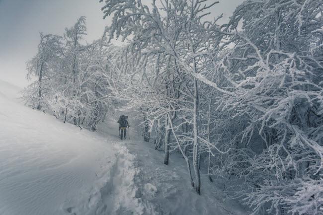 Lạc vào mùa đông kỳ diệu trên núi ở Ba Lan - hình ảnh 12