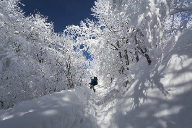 Lạc vào mùa đông kỳ diệu trên núi ở Ba Lan - hình ảnh 11