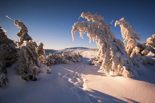 Lạc vào mùa đông kỳ diệu trên núi ở Ba Lan - hình ảnh 19