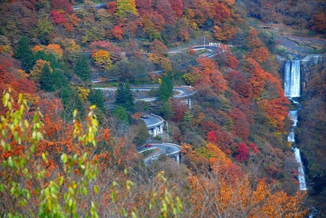 Vẻ đẹp ngỡ ngàng của Irohazaka mùa lá đỏ - 4