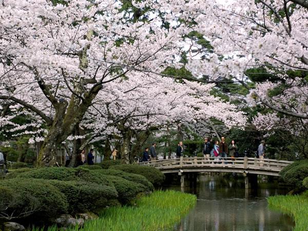 Lạc lối tại xứ ảo mộng trong những khu vườn đẹp như cổ tích này - 2