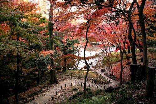 Lạc lối tại xứ ảo mộng trong những khu vườn đẹp như cổ tích này - 6