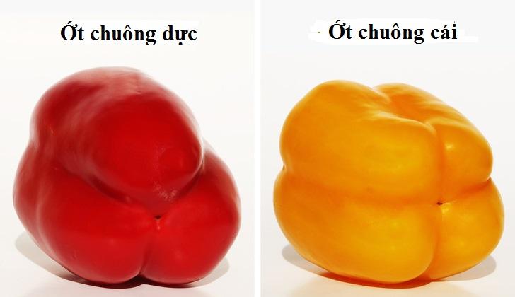 Bà nội trợ thông minh phải biết 10 bí quyết chọn trái cây siêu sạch này - 3