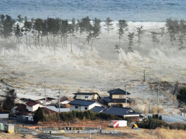 Thế giới - Sóng thần ập vào Indonesia cao tới 11,3 mét