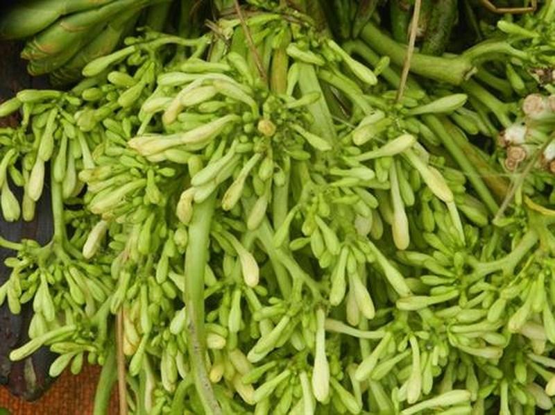 """Các loại rau rừng """"đỉnh nhất"""", ăn là nghiện của vùng Tây Bắc - 6"""