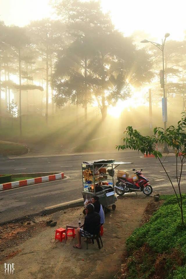 Hình ảnh Đà Lạt đẹp đến nao lòng trong sáng sớm giao mùa khiến ai cũng muốn xách balo lên và đi ngay - 11