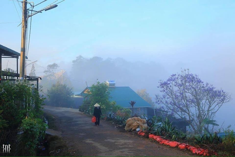 Hình ảnh Đà Lạt đẹp đến nao lòng trong sáng sớm giao mùa khiến ai cũng muốn xách balo lên và đi ngay - 7