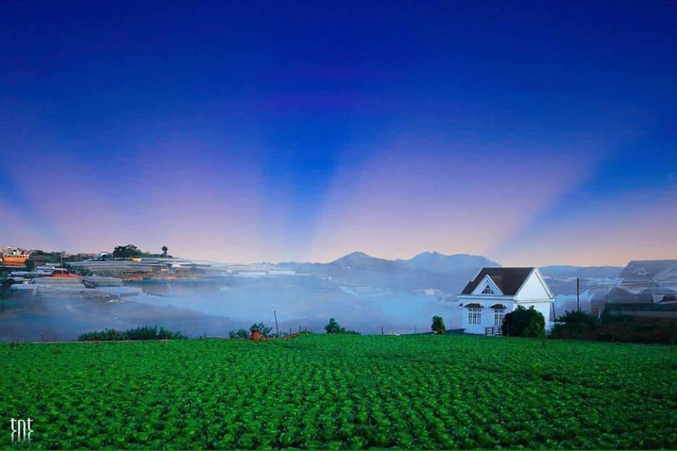 Hình ảnh Đà Lạt đẹp đến nao lòng trong sáng sớm giao mùa khiến ai cũng muốn xách balo lên và đi ngay - 8