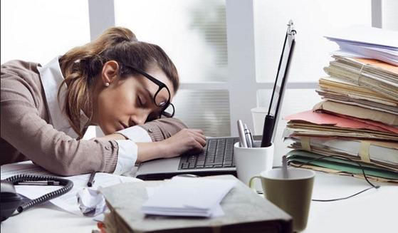 Công ty trả tiền cho nhân viên chỉ để ngủ - 2