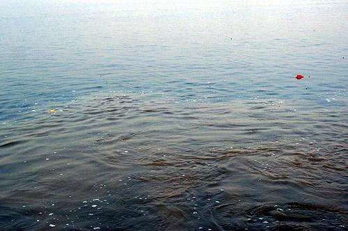 Du lịch tâm linh đừng bỏ qua những dòng sông thiêng liêng nhất Ấn Độ - 3