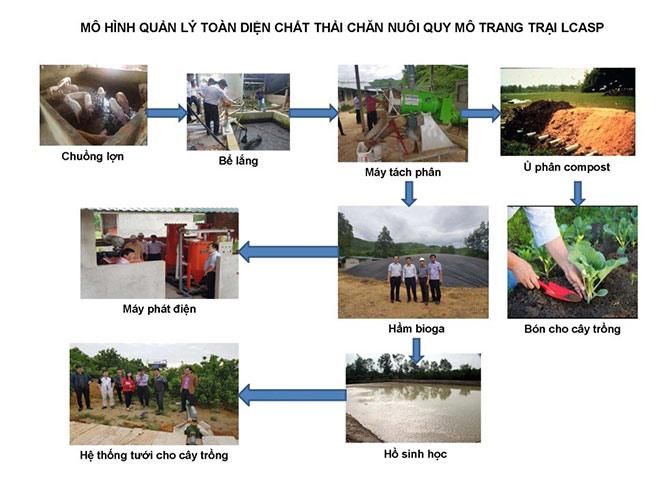 Dự Án Lcasp - giải pháp xử lý toàn diện chất thải chăn nuôi tại các tỉnh ĐBSCL - 2