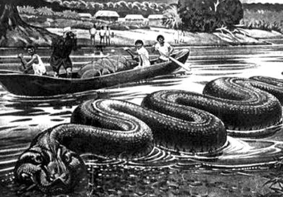 Những bí ẩn trong rừng rậm Amazone đến nay vẫn chưa được giải đáp - 5