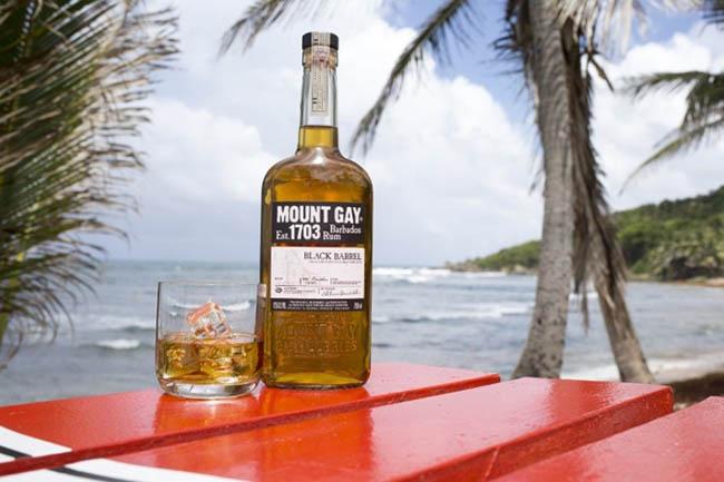 Barbados : Thiên đường ăn chơi hàng đầu của người nổi tiếng - 5