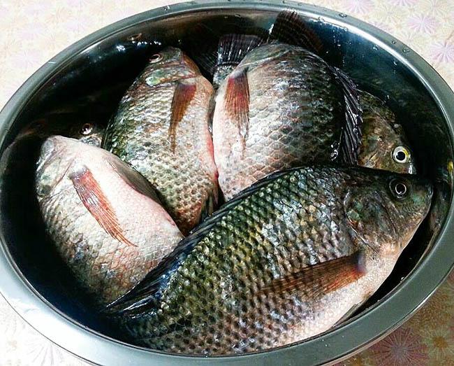 Cá nướng thơm mềm chấm mắm tiêu gừng cay xè gây nghiện cả nhà - 1