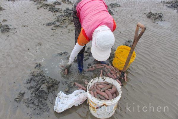 Cá dương vật, món ăn khiến người dân Hàn Quốc tranh nhau mua quanh năm - 3