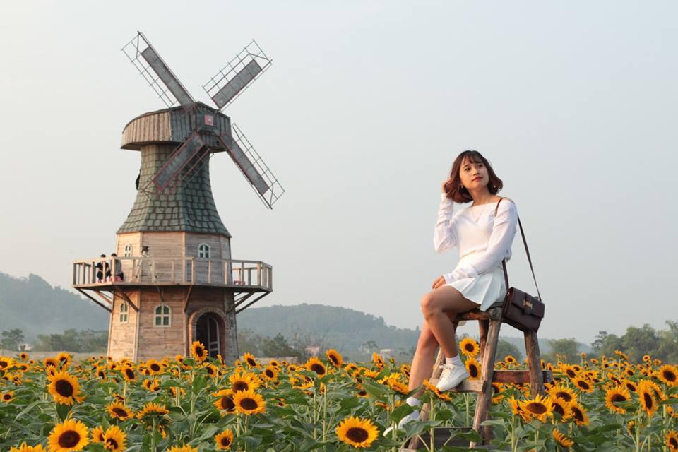 Thiên đường hoa hướng dương khiến giới trẻ ngây ngất ở Bắc Giang - 6