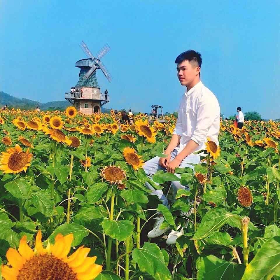 Thiên đường hoa hướng dương khiến giới trẻ ngây ngất ở Bắc Giang - 7