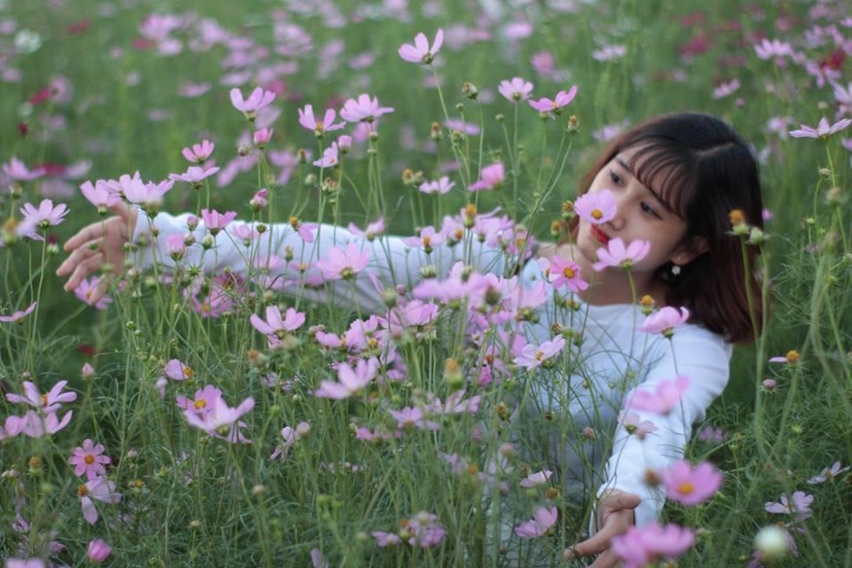 Thiên đường hoa hướng dương khiến giới trẻ ngây ngất ở Bắc Giang - 9