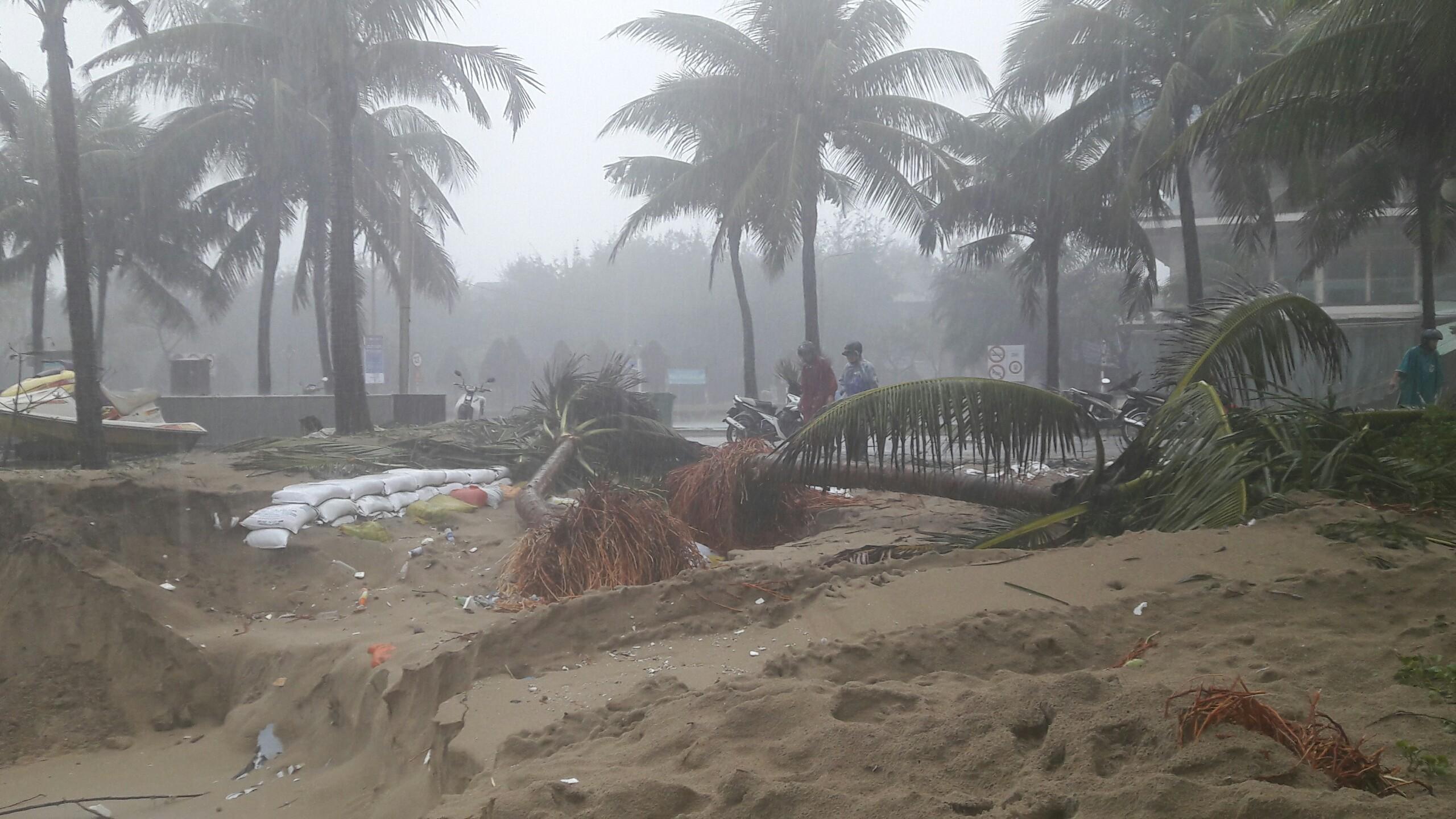 Bãi biển đẹp nhất hành tinh ở Đà Nẵng sạt lở kinh hoàng - 8
