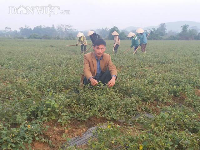 Giám đốc trẻ đưa cả làng ăn nên làm ra nhờ loài cây dại - 1