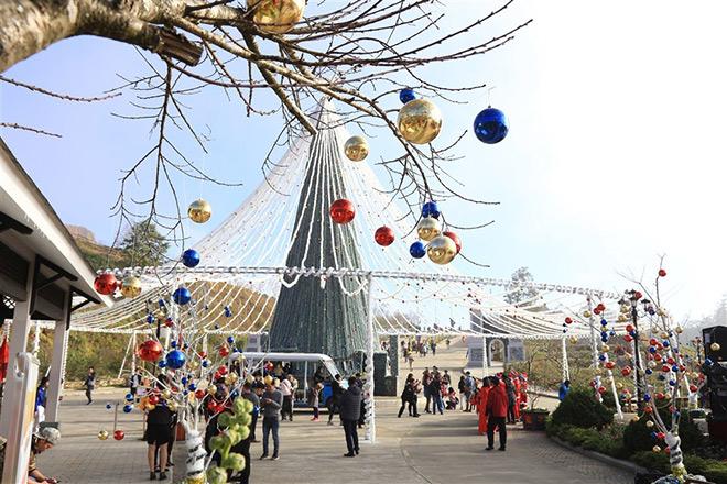 Những cây thông Noel đặc biệt… đang khiến du khách phát sốt với Lễ hội mùa đông Fansipan - 2