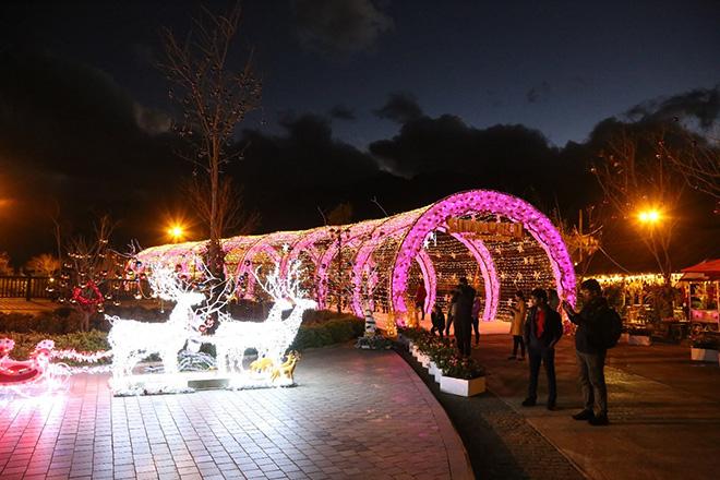 Những cây thông Noel đặc biệt… đang khiến du khách phát sốt với Lễ hội mùa đông Fansipan - 6