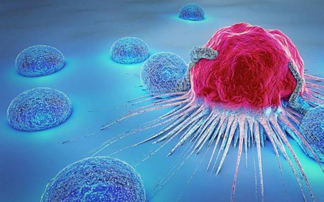 Nano Fucomin: Bước đột phá mới của Học Viện Quân Y dành cho người bệnh u bướu - 1