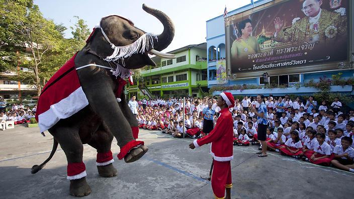 Điểm khác biệt nào giữa Giáng sinh Châu Á và Tây? - 4