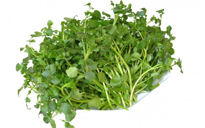 """20 tác dụng tuyệt diệu của loại rau là """"thần dược của người nghèo"""" - 3"""