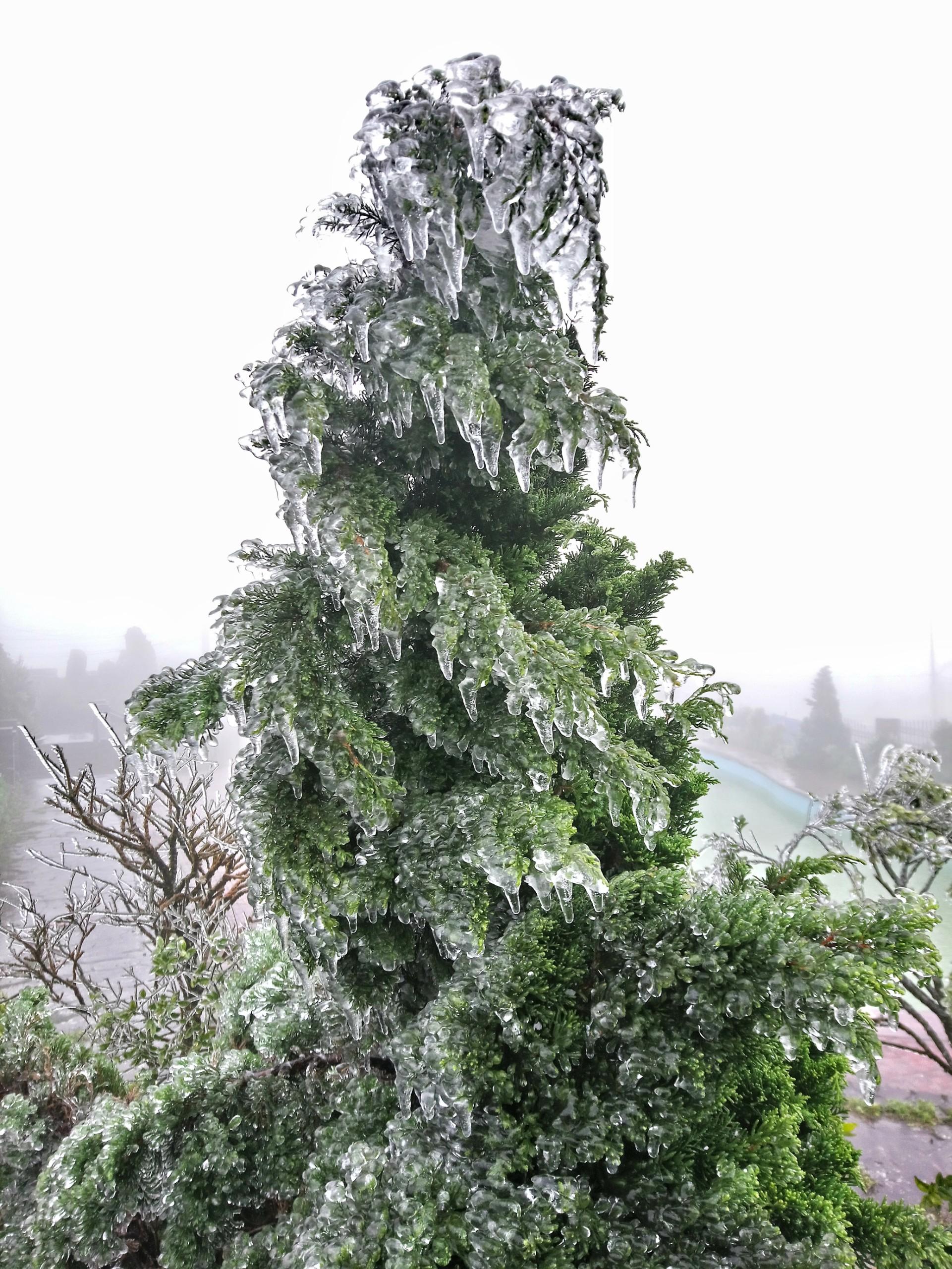 Miền Bắc rét kinh hoàng, Mẫu Sơn xuống -0,5 độ C, băng giá phủ trắng - 2