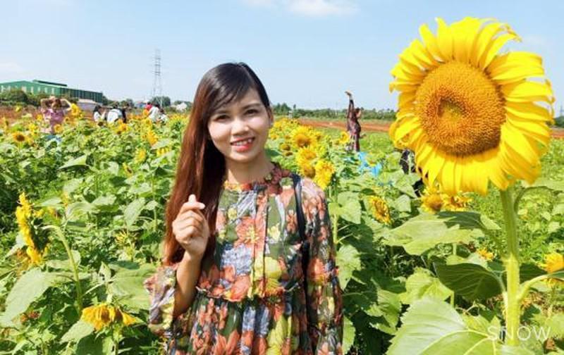 Đắk Lắk: Giới trẻ thích thú với cánh đồng hoa hướng dương giữa TP. Buôn Ma Thuột - 5