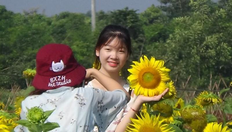 Đắk Lắk: Giới trẻ thích thú với cánh đồng hoa hướng dương giữa TP. Buôn Ma Thuột - 4
