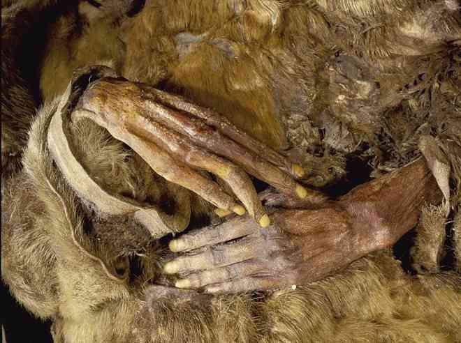 Ngỡ ngàng xác ướp gia đình thổ dân vẹn nguyên sau 500 năm - 2