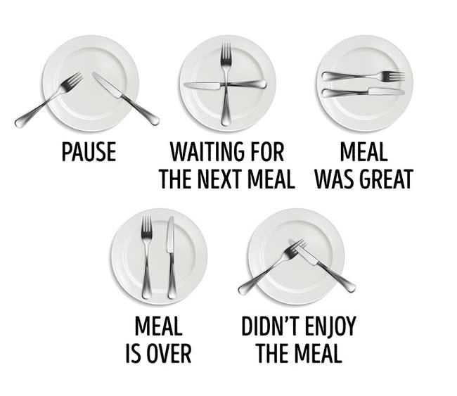 18 quy tắc lịch sự trên bàn ăn không phải ai cũng biết - 4