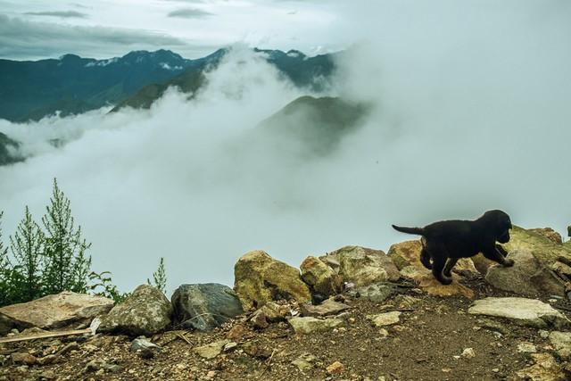 Du ngoạn đỉnh Mã Pì Lèng - một trong tứ đại đỉnh đèo của miền Bắc - 7