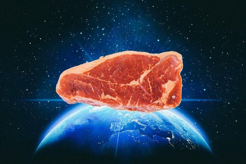 Không cần nuôi bò mà vẫn sản xuất được thịt bò - 1