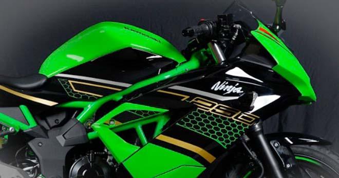 Kawasaki trình làng Ninja 250 SL KRT: Sẵn sàng hạ Honda CBR250
