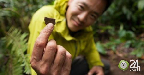 Tìm thấy thành phố vàng huyền thoại trong rừng rậm Colombia?-Thế giới