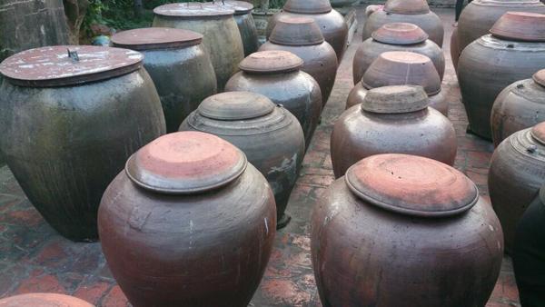 """Đem quả cà đi ủ hơn nửa năm, bán 50.000 đồng/quả vẫn """"cháy"""" hàng - 1"""