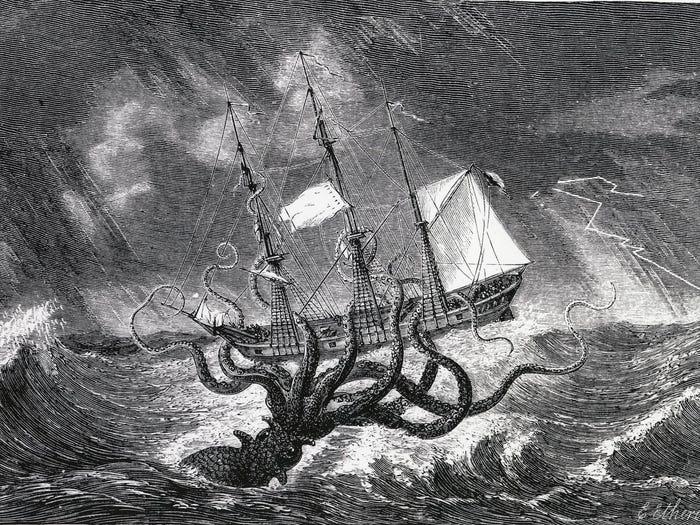 Loài mực khổng lồ như hòn đảo nhỏ, có thể đánh chìm thuyền bè là có thực? - 2