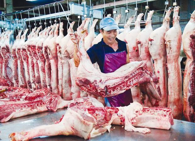 Sau lệnh cấm xuất khẩu tiểu ngạch, giá lợn hơi chững lại - 1