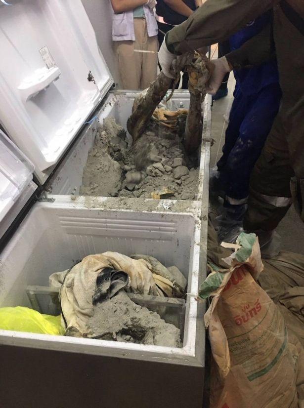 Nữ triệu phú Thái Lan bị đổ bê tông, giấu xác trong tủ lạnh - 2