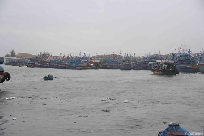 Bão số 5 tiến sát Bình Định: Đóng cửa sân bay, sẵn sàng di dân - 2