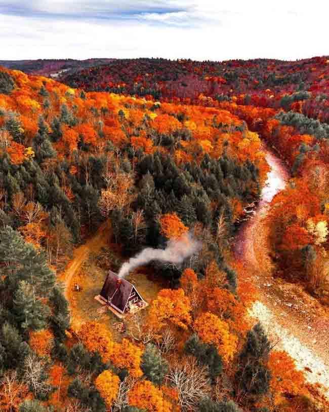 Mùa thu ở các nước trên thế giới rực rỡ và đẹp đến nhường nào? - 5