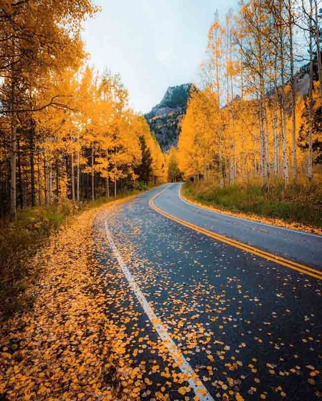 Mùa thu ở các nước trên thế giới rực rỡ và đẹp đến nhường nào? - 6