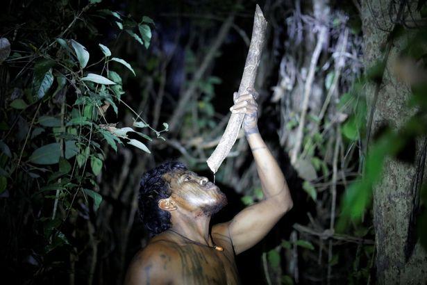 Thủ lĩnh bộ lạc Amazon bị những kẻ lâm tặc phục kích, sát hại - 2